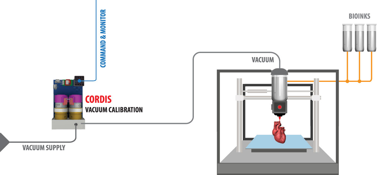 Cordis Application: 3D Bioprinting (Vacuum)